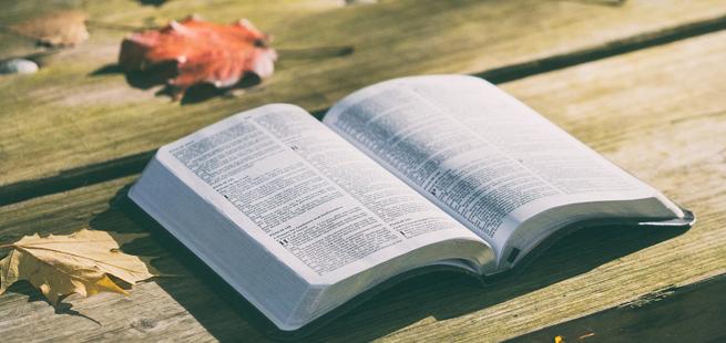 """""""Em verdade, em verdade, vos digo: quem crê tem a vida eterna."""" (Jo 6,47) – Palavra de Vida Abril 2018"""
