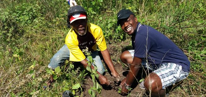 Jovens de Alagoas plantam 80 mudas de árvores em assentamento rural