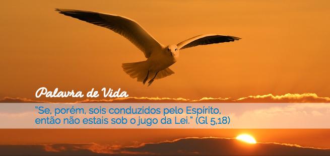 """""""Se, porém, sois conduzidos pelo Espírito, então não estais sob o jugo da Lei."""" (Gl 5,18) – Palavra de Vida de Outubro"""